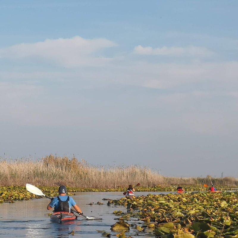 În caiac în Delta Dunării