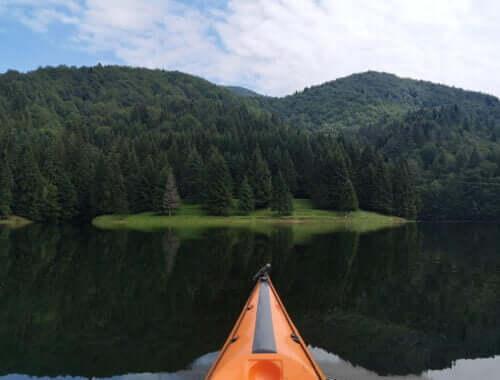 Poiana pe malul lacului Vidraru