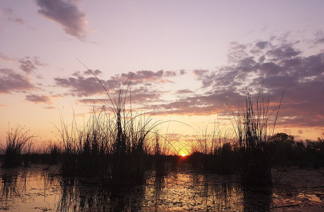 Asfntit in Delta Neajlovului