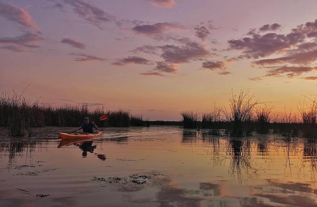Pe inserat in Delta Neajlovului