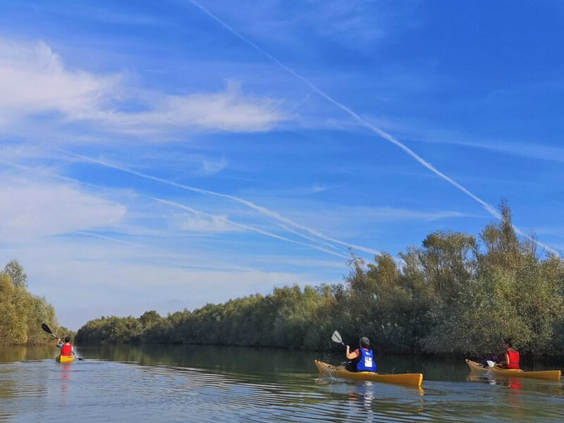 Caiace pe râul Argeș
