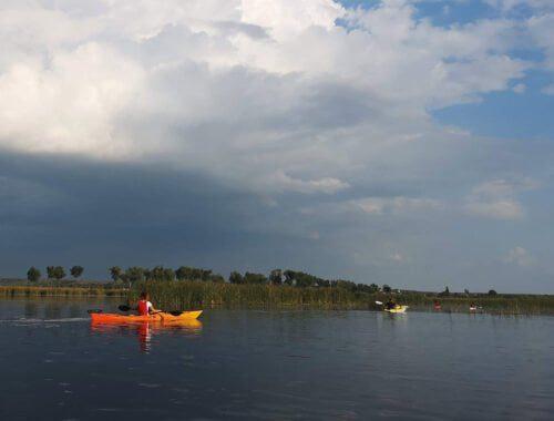In caiace in Delta Neajlovului