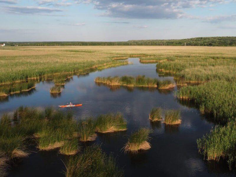 Caiac in Delta Neajlovului - Balta Comana - vedere din drona