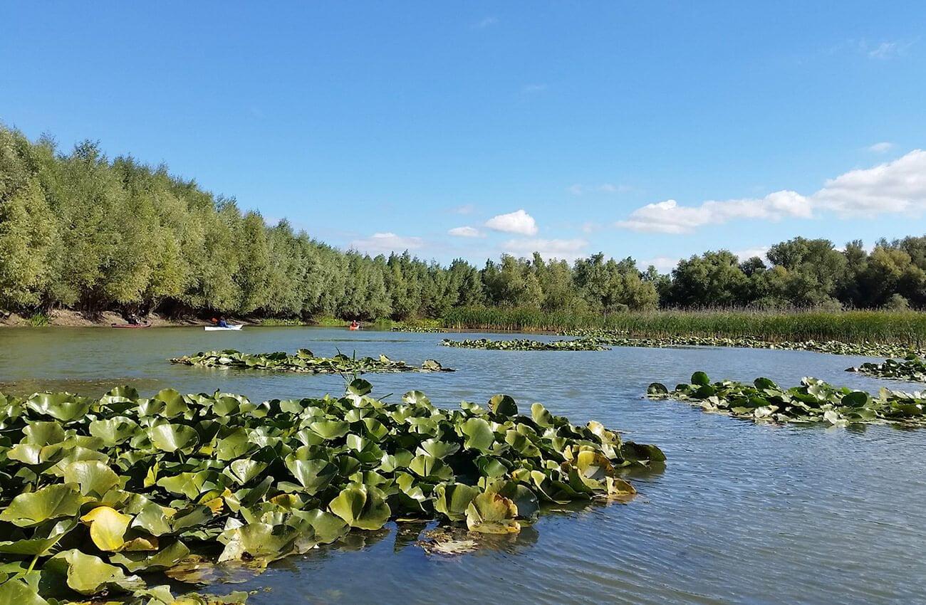 Delte Dunarii - Tulcea - delta Superioara