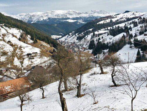 Peisaj de iarna in Moieciu de Sus