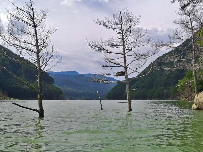 Lacul siriu vazut de pe apă